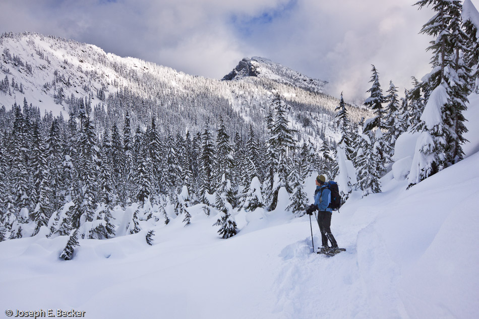 Snowshoing near Snoqualmie Pass