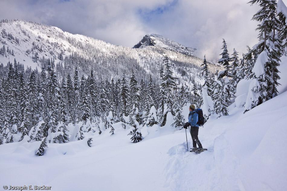 Snowshoing near Snoqualmie Pass