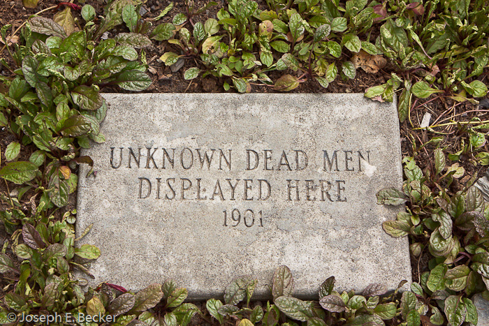 Dead Men were Here