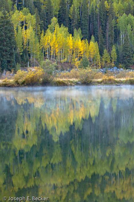 Aspens reflect in Crystal Lake