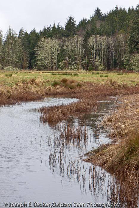 Johns River Field