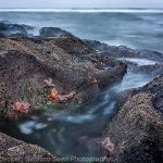Low Tide, Beach #4