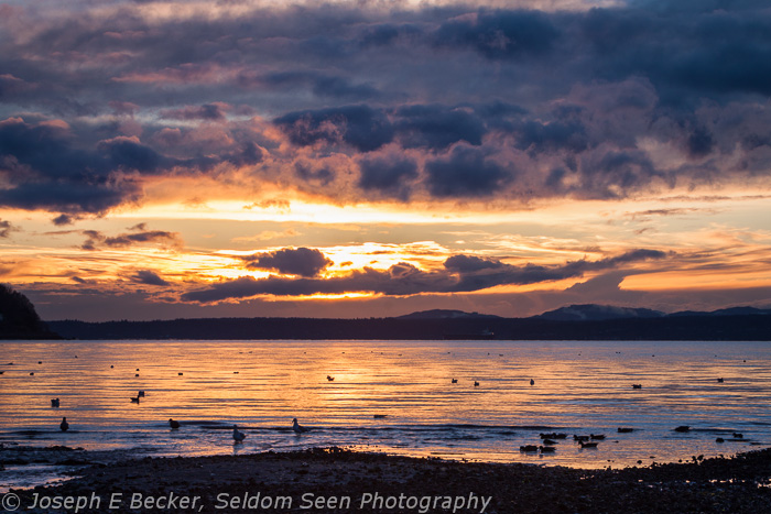 Carkeek Sunset