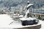 Harbor Snows