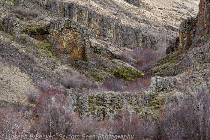 Umtanum Canyon