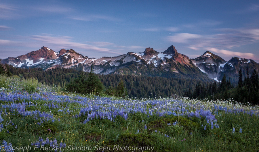 Tatoosh Twilight