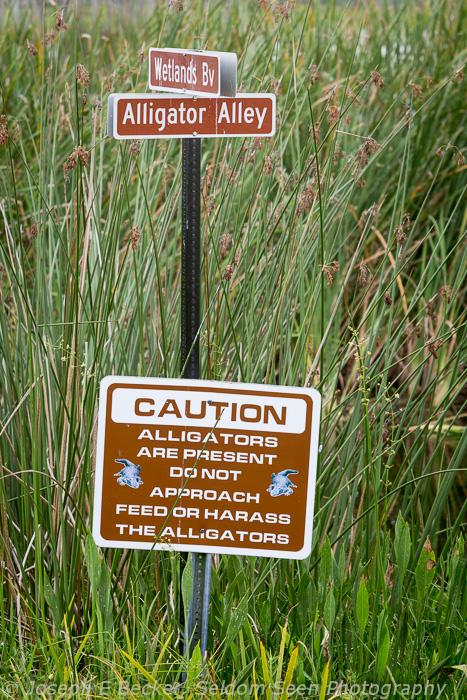 Gator Warning