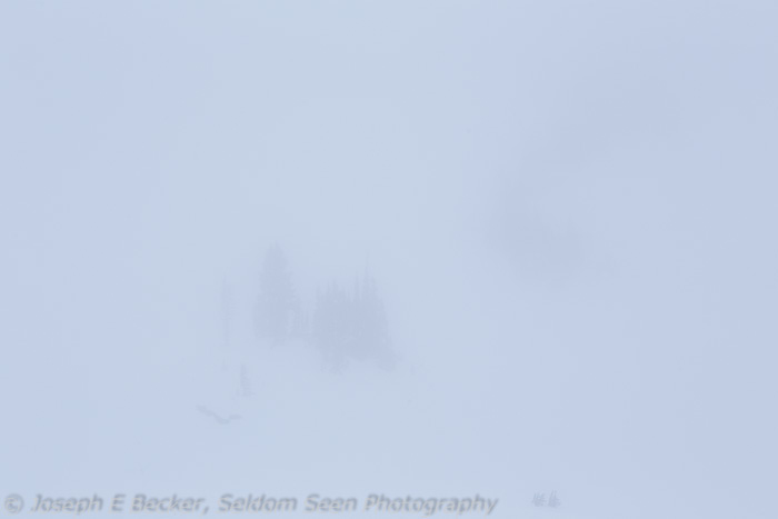 December (out of the camera) - whiteout!