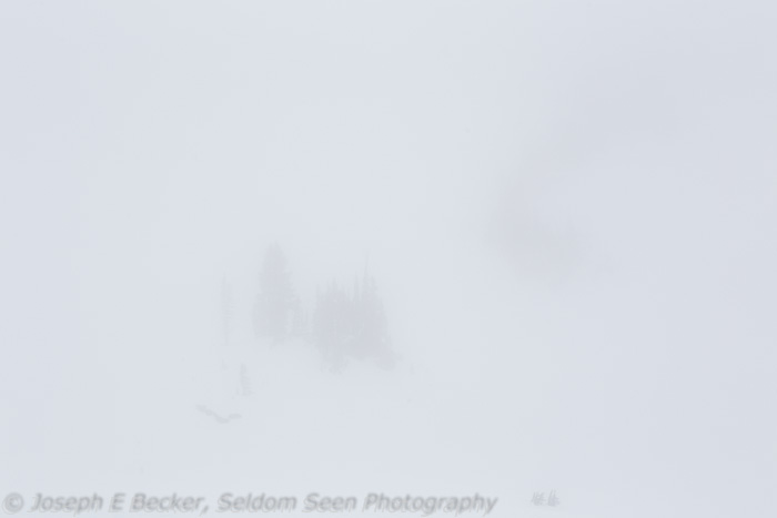 While snowshoeing at Mount Rainier, I wanted to show the near whiteout conditions. I guess the image did succeed, because there isn't much visible here. Lesson learned (again) - when there is nothing much in the background, put something visible in the foreground.