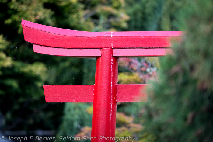 Point Defiance detail shot 4