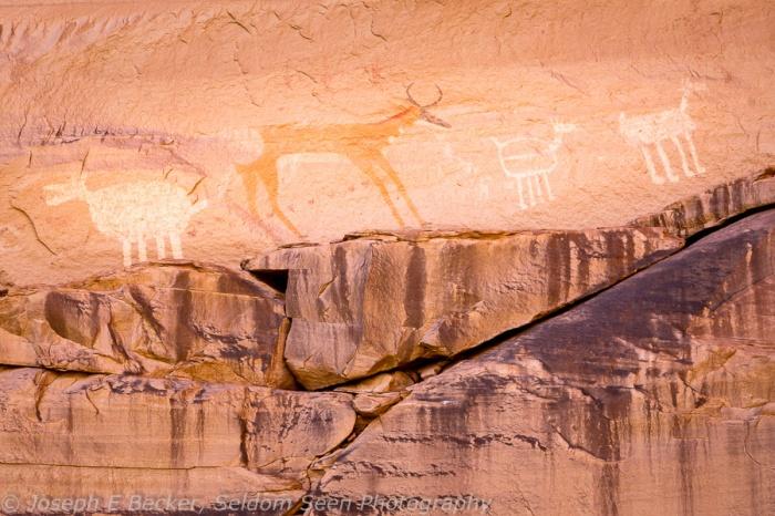Antelope Pictoglyphs