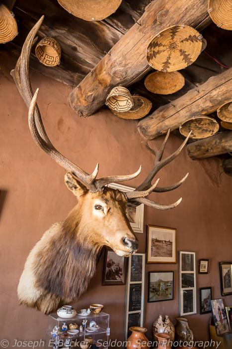 Elk and Baskets