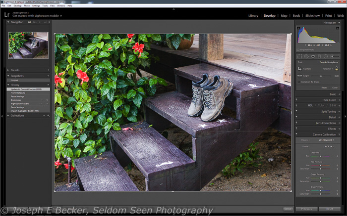 Golden Ratio overlay in Lightroom