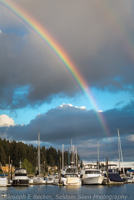Harbor Rainbow