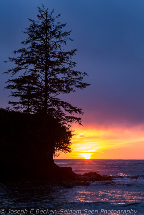 Ozette River Sunset