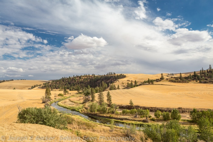 "Palouse River, north of the small ""town"" of Diamond"