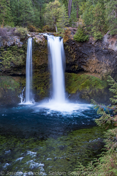 Koosah Falls on the McKensie River