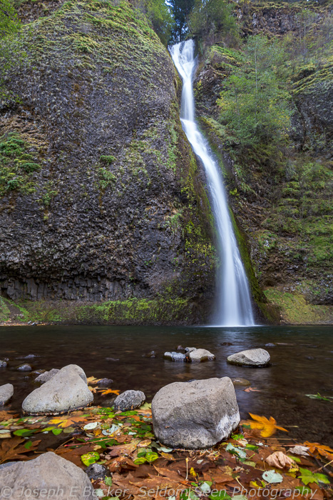 Horsetail Falls in the Columbia Gorge - the maple trees here were still mostly green when I was there, though there were some colorful leaves in the water.