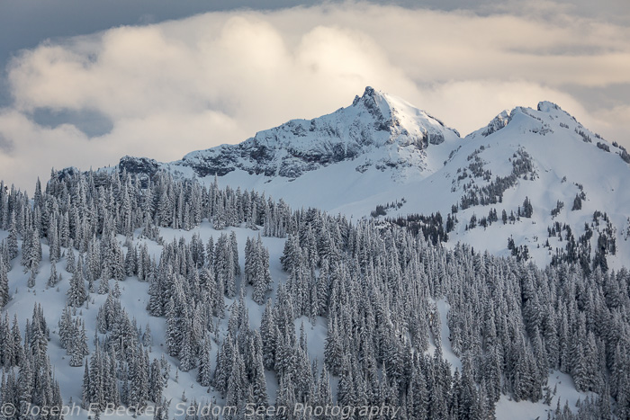 Part of the Tatoosh Range, south of Paradise