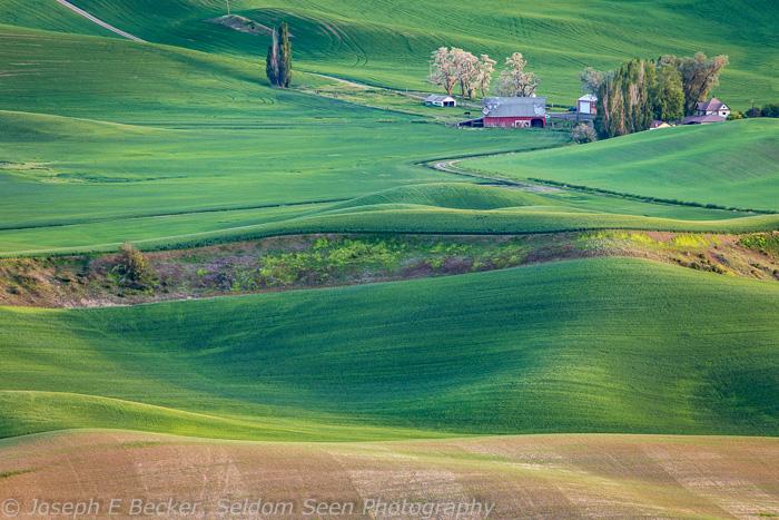 Farmhouse and barn below Steptoe Butte