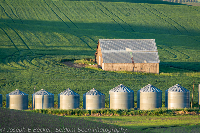 Barn and silos viewed from Huggins Road (the road in the featured images above)