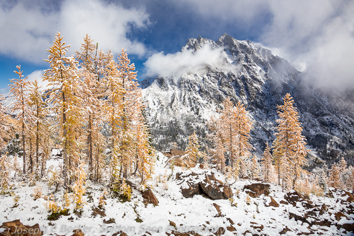 Snow, larch trees, and Mount Stewart from Ingalls Pass
